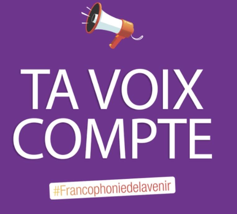 Consultation jeunes francophonie